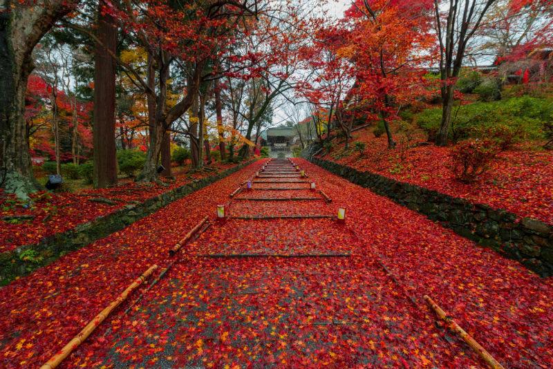 Takahiro-Bessho-Kyoto02