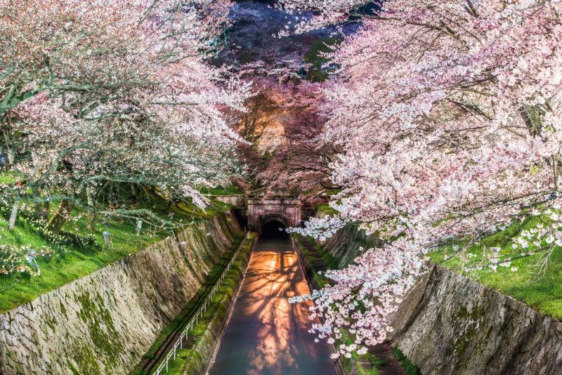 Takahiro-Bessho-Kyoto37
